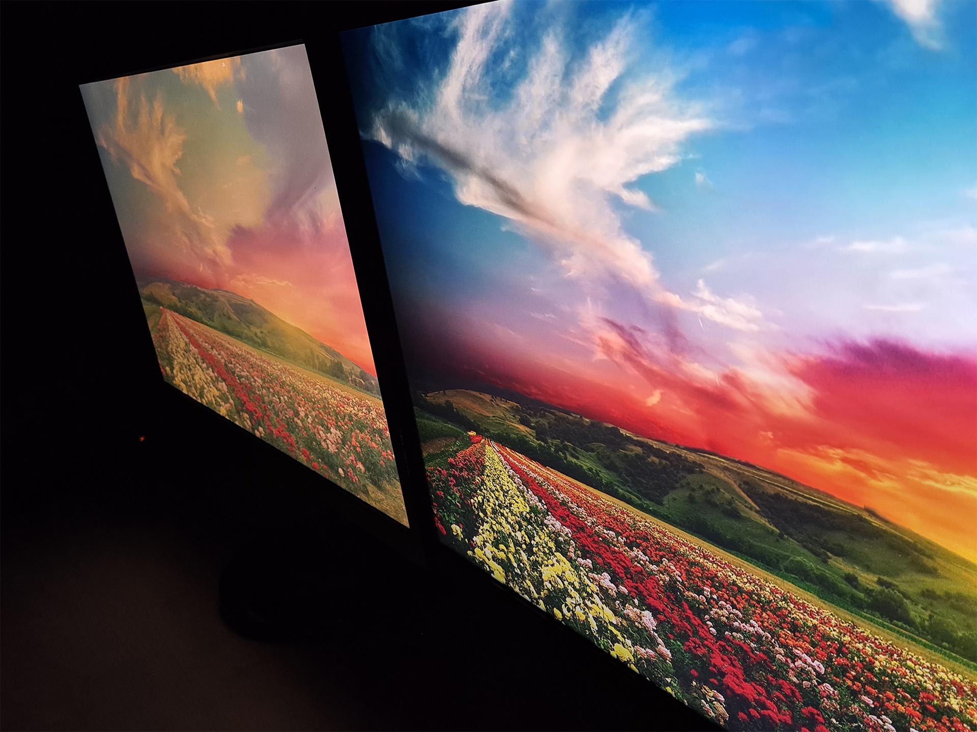 Viewsonic XG2405 Farbe und Blickwinkelstabilität